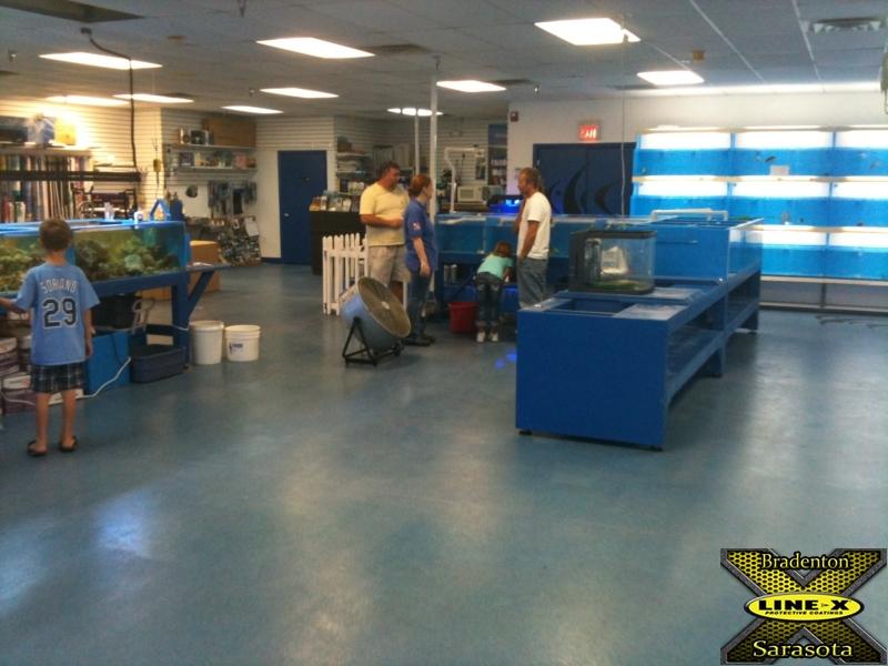 Aspart-X Marine Dreams Floor