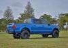 BlueF150004