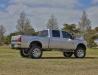 Silver F250_009